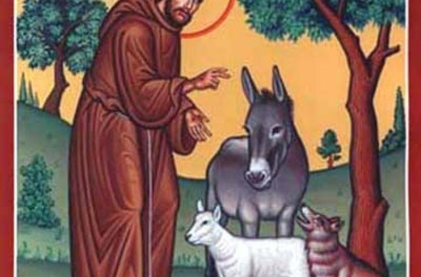 Teologia animale