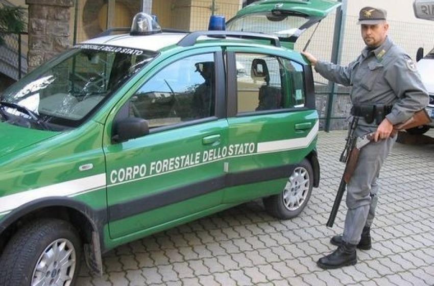 Rifiuti speciali: deposito abusivo sequestrato a Casalincontrada