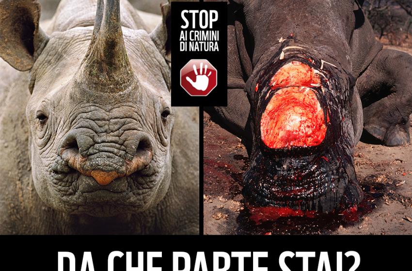 """Ad Ortona il WWF presenta la Campagna """"Crimini di Natura"""""""