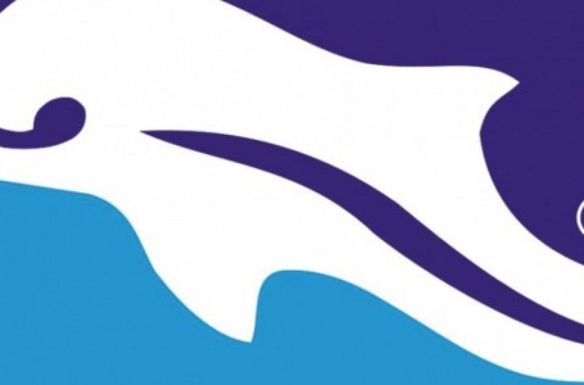 Tracollo del Delfino contro le Rondinelle penultime in classifica