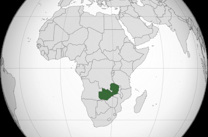 Accordo di cooperazione con lo Zambia per la salute pubblica e animale