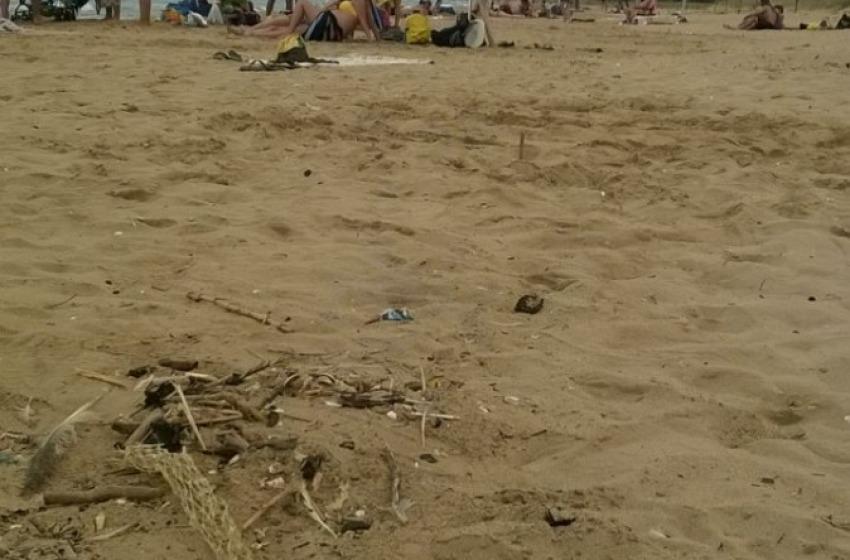 Fumatori incivili insozzano l'area protetta (?) Parco Marino del Cerrano