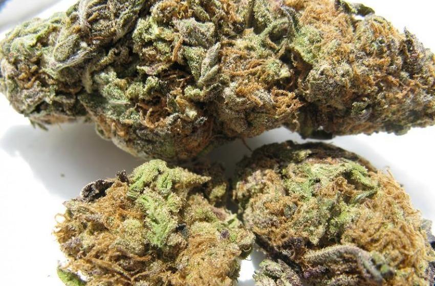 Sequestrati 28Kg di marijuana