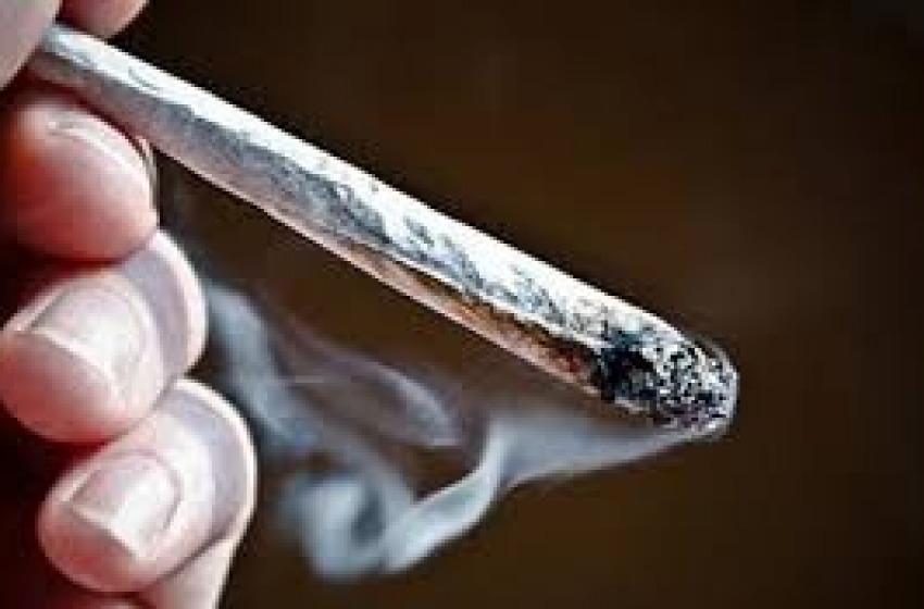 La polizia arresta giovane albanese con 1,3 chili di marijuana