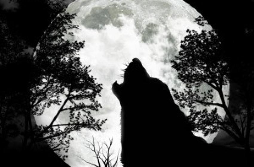 La leggenda del Lupo Cattivo venuto in Abruzzo dai Carpazi o dall'Est Europa