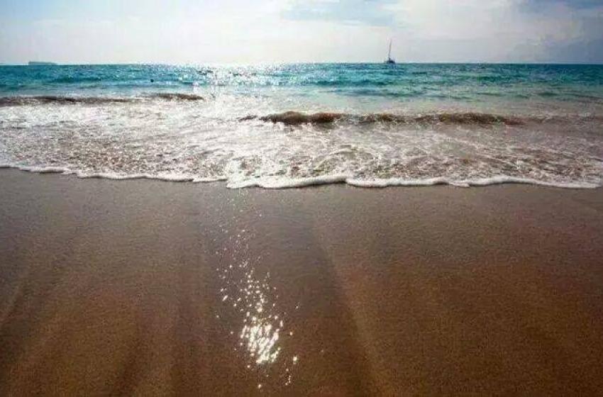 """Il WWF torna sul Piano spiaggia di Pescara: """"Mai condiviso dalle associazioni"""""""