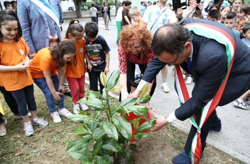 Crescerà a scuola l'albero della legalità donato ad Alessandrini