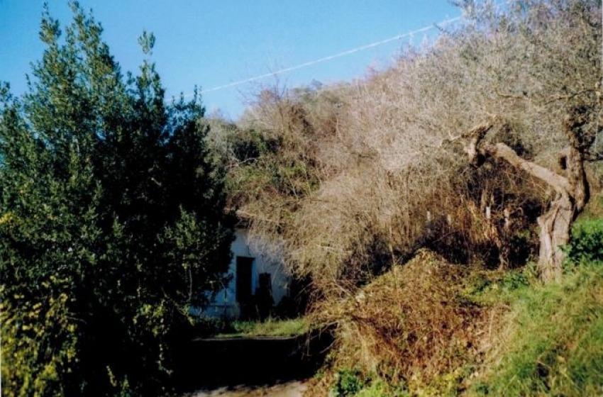 Esecuzioni immobiliari nel Comune di Loreto Aprutino: proprietà con terreni agricoli