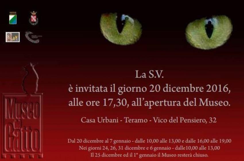 """La Città di Teramo inaugura domani il """"Museo del Gatto"""": è il primo in Italia"""