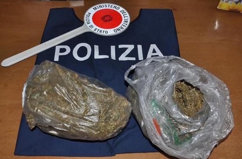"""Incensurato denunciato dalla polizia per droga: """"Coltivo marijuana per uso personale"""""""