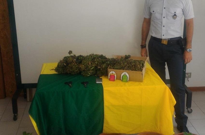 """""""Operazione smoking pots"""". Sequestrati 1,8 Kg di marijuana e arresto in flagranza"""