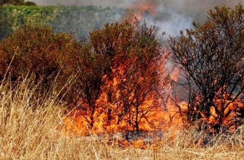 A fuoco 15 ettari di terreno
