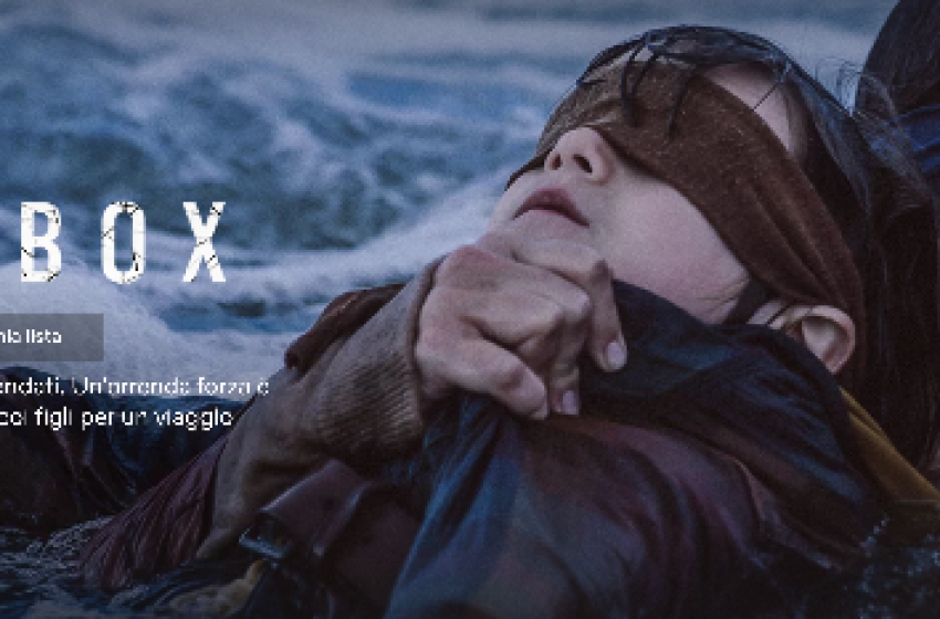 #BIRDBOXCHALLENGE: Netflix ispira una nuova follia collettiva