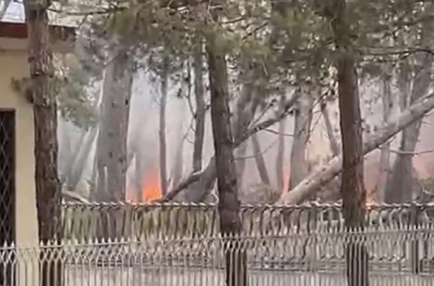 La Pineta Dannunziana brucia ancora per alcune ore