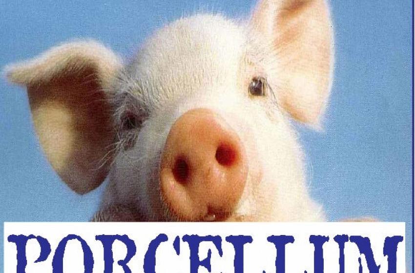 """Referendum contro il """"Porcellum"""". Tutti a votare!"""