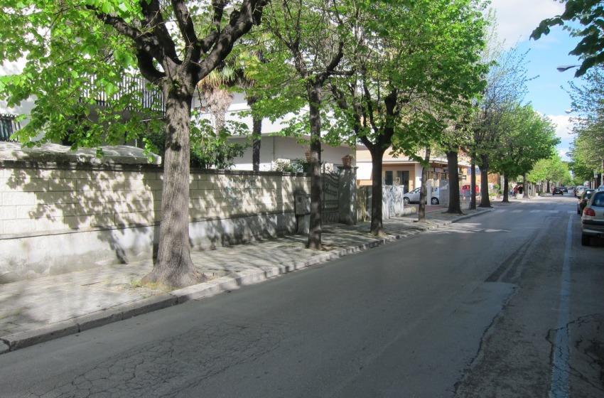 Mattanza in Corso Nettuno