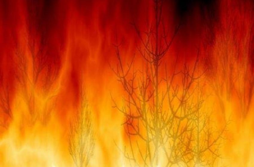 Celano. In fiamme una fabbrica di legname. Fumo invade A25