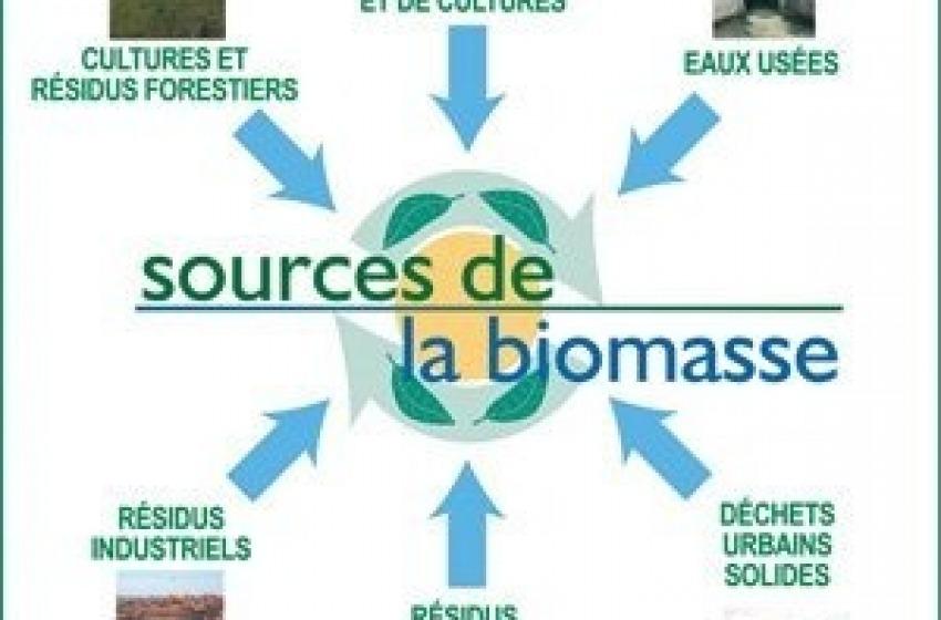 Bazzano. Pronte 3mila firme contro la centrale biomasse