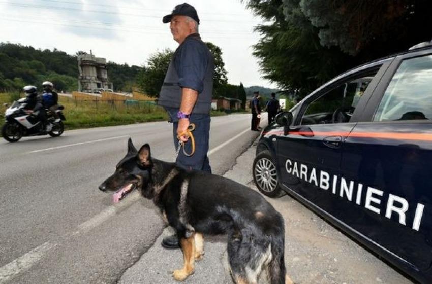Ladri sorpresi in casa scappano con tre auto rubate