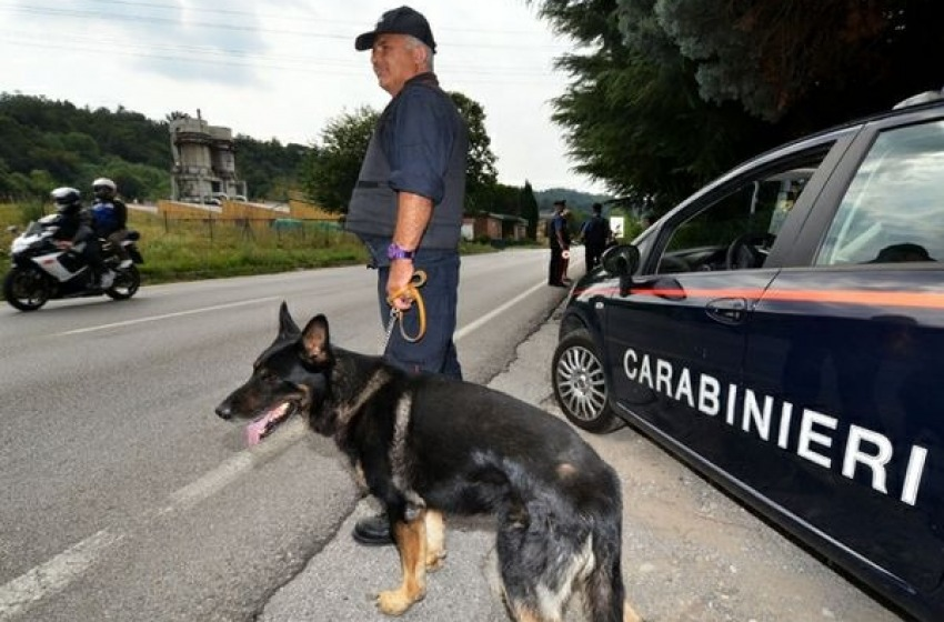 Incastrato dal cane antidroga: 34enne arrestato dai CC