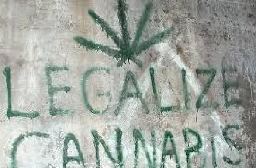 Marijuana e eroina non sono la stessa cosa. Firma la petizione