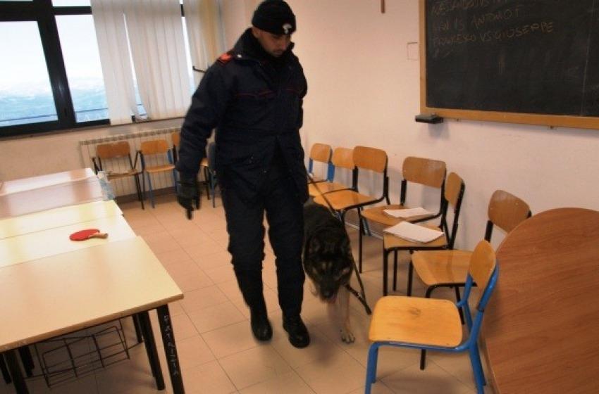 L'Antidroga va a scuola. Tre studenti incastrati dal fiuto dei cani