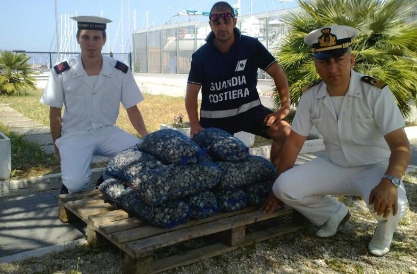 Sequestrati 170 chili di vongole con maxi multa da 2mila euro