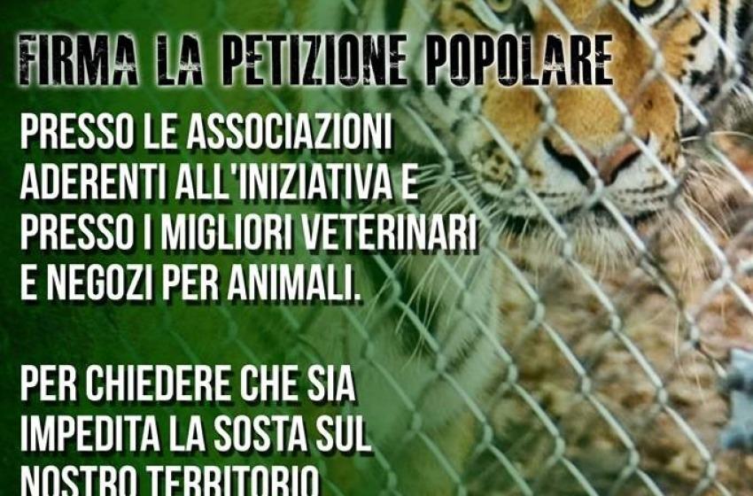 Lanciano: CasaPound raccoglie firme contro il circo con gli animali